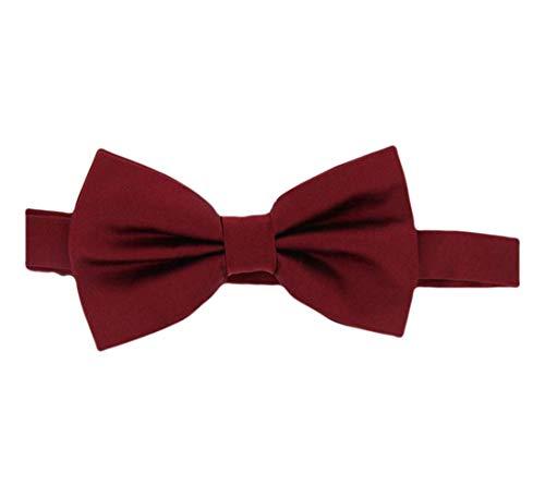 David Van Hagen Plaine vin satin cravate en soie - déjà-nouée de