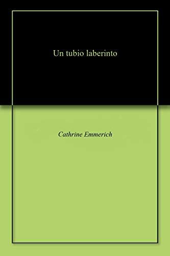 Un tubio laberinto (English Edition)