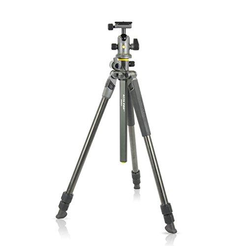 Vanguard Alta Pro 2+ 263CB 100 Carbon Fiber Tripod with Alta BH-100 Ball Head and Multi-Angle Center Column for Sony, Nikon, Canon DSLR Cameras