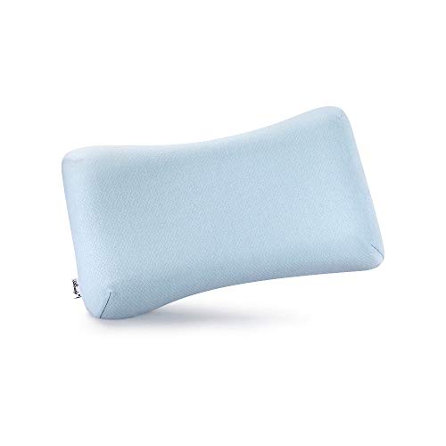 Aloudy Memory Foam Toddler Pillow, Organic Cotton Cover,...