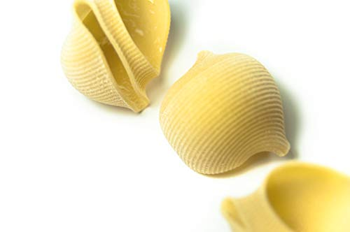 Lumaconi. Pastificio Faella. 20 x 500 gr - 10 kg. Pasta di gragnano trafilata in bronzo e impasto lento.