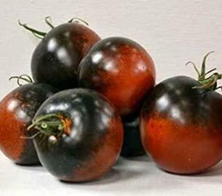 Seeds Chestnut Chocolate Tomato Seeds (Very Dark Tomatoes) Get 10 Seeds #PAJ01YN