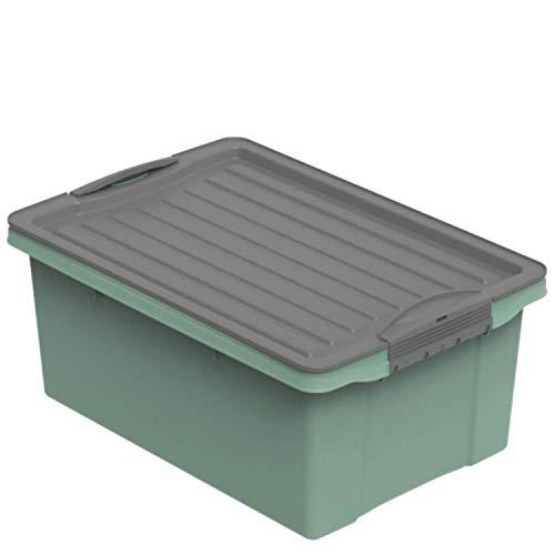 Rotho Compact Aufbewahrungsbox 13l mit Deckel, Kunststoff (PP recycelt) BPA-frei, grün/anthrazit, A4/13l (39,5 x 27,5 x 18,0 cm)