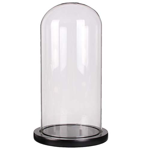 Moonlear Glass Dome Cloche Tabletop Display Case Bell Jar 4.7x11inch (Black Wood Base)