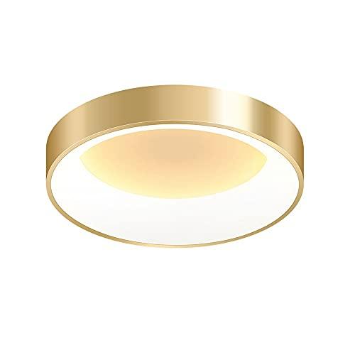 LPFWSK Luz cálida (3000K) Luz de techo dorada de techo de montaje enjuague, accesorio de iluminación de techo, lámparas de estilo simple de estilo simple, lámpara de techo de estilo cálido y romántico