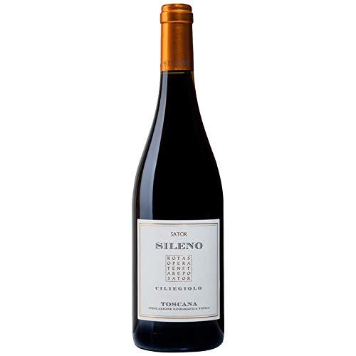 Vino Rosso Toscana - Sileno Ciliegiolo - Montescudaio DOC 2016 - Sator - Bottiglia 0,75 L