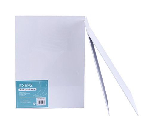 Exerz Paquete de 6 Paneles de Lienzos / 40 x 30cm 280GSM / P