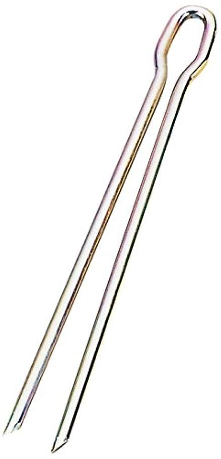 潜水艦フォーマル協力的エバニュー(EVERNEW) ロープマーカー用釘4×145(50本入) EKA189