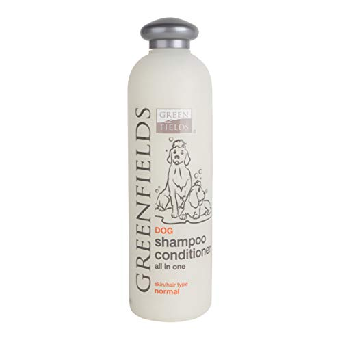 Greenfields Shampoo und Conditioner in einem 400ml