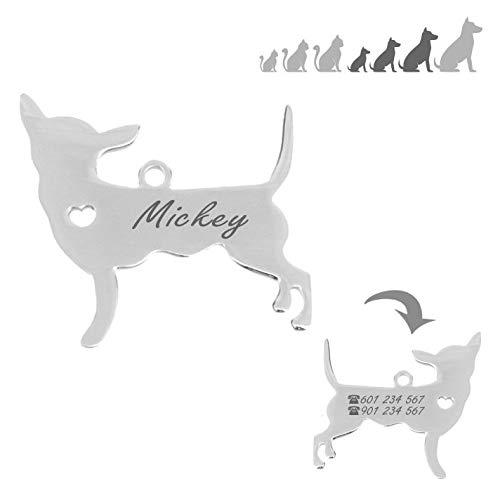 Iberiagifts - Placa identificación de Acero Inoxidable en Forma de Chihuahua. para Mascotas pequeñas a Medianas. Chapa Medalla de identificación Personalizada Collar Perro Gato grabada