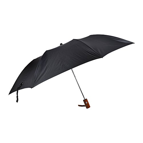Fendo 2 fold auto open collage umbrella for men