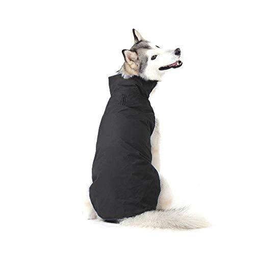 Bwiv Abrigos para Perros de Invierno Chaqueta Impermeable Forrado de Polar con Apertura para Correa Negro 6XL