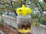 Set di 4 trappole ecologiche per vespe, prodotto italiano