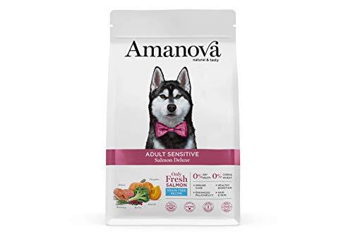 Amanova Cibo Secco per Cani Adulti di Taglia Media o Grande con Pelle o Pelo sensibile Gusto Salmone - 100% Naturale, ipoallergenico e monoproteico - Grain Free - Cruelty Free - Formato da 10 kg