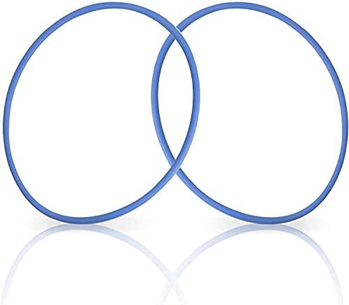 GORNORVA Hayward Clorador O-Ring (2 unidades) resistente al cloro VITON para Hayward CL200 y CL220 Pool Chlorinator Chemical Feeder Lid