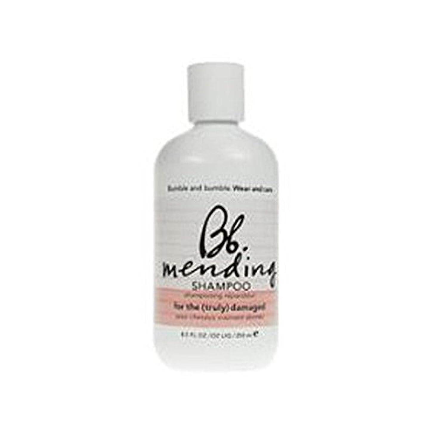 財政レモン微妙Bumble & Bumble Wear And Care Mending Shampoo (250ml) - 着用し、補修シャンプー(250ミリリットル)を気に [並行輸入品]