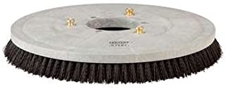 20 inch Poly Brush for Tennant T3 20