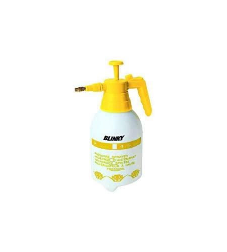 Pompa a Pressione Con Ugello in Ottone Capacita' LT 2