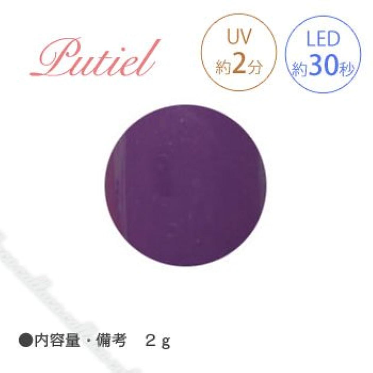 薬理学食料品店記述するPutiel プティール カラージェル 109 オリエンタルパープル 2g
