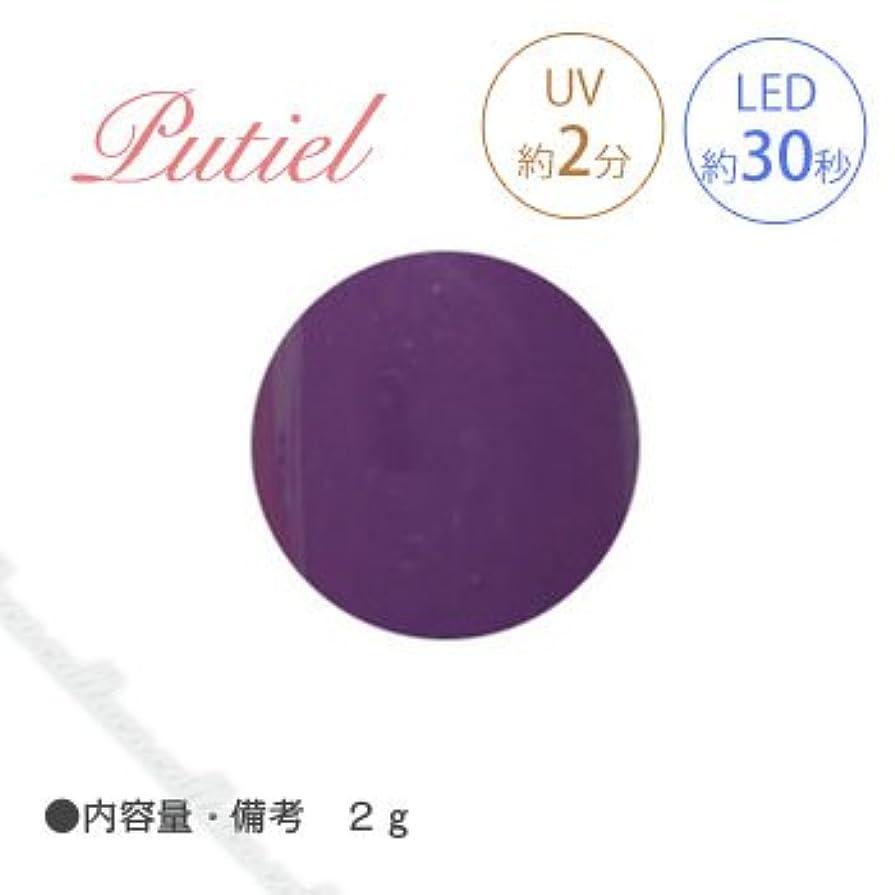 タオルラウンジ同情的Putiel プティール カラージェル 109 オリエンタルパープル 2g