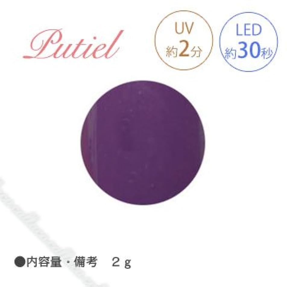 代理人期限酸化するPutiel プティール カラージェル 109 オリエンタルパープル 2g