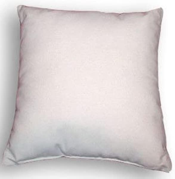 22 X 22 Pillow Insert