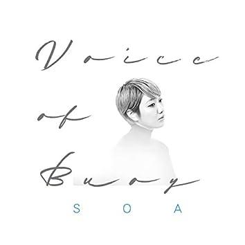 Voice of Buoy
