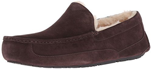 UGG Male Ascot Slipper, Espresso, 6 (UK)