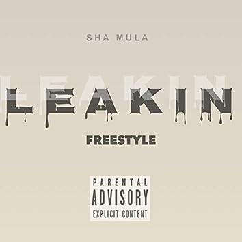 Leakin Freestyle