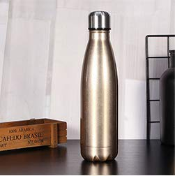 YCH botella de agua de metal, sin BPA, botella de vacío de acero inoxidable aislada de doble pared para deportes al aire libre senderismo correr 750ml/25oz (1L, Champán)