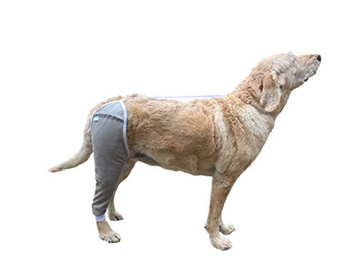 After Surgery Wear Hip and Thigh Wound Protective Sleeve for Dogs. Dog Recovery Sleeve. Recommended by Vets Worldwide (Large, Gray)