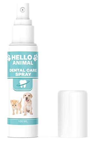 NEU: HelloAnimal DENTAL Spray für Hunde und Katzen – Zahnsteinentferner auch für Zwischenräume - Zahnreinigung und Zahnpflege – Dentalspray für Mundgeruch