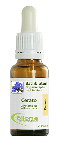 Joy Bachblüten, Essenz Nr. 5: Cerato; 20ml Stockbottle