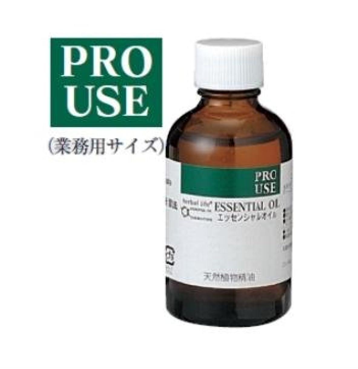モニター寛大さホールドオール生活の木 エッセンシャルオイル ゼラニウム 精油 50ml アロマオイル アロマ