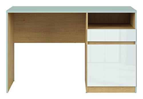 Boardd - Mesa de ordenador para ordenador de mesa con compartimento de almacenamiento, color gris claro/roble pulido, blanco brillante, 120 x 75,5 x 57 cm