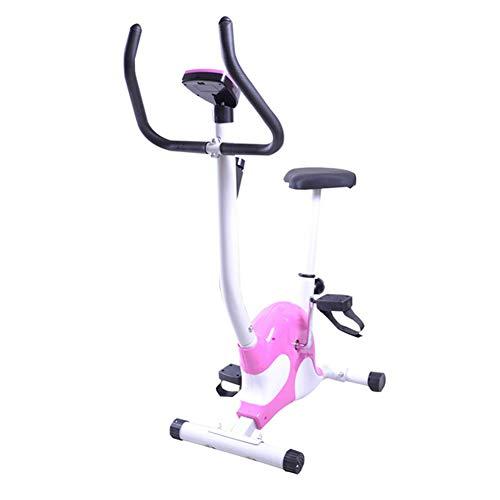 YourBooy Mini Bicicleta Estática Plegable, Pantalla LED De Interior Ejercicio...