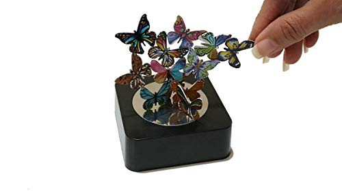 Aryellys Magnetic Sculpture, Butterflies Magnetic Toys with Mirror Base, Magnetic Desk Toys, Magnet Toys for Adults, Stress Relief Toys Desk Gadgets