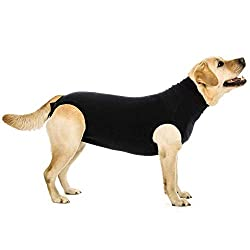 Yellow Labrador wearing a Black Suitical Recovery Suit.