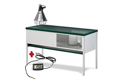 FINCA CASAREJO Criadora para Pollitos Eco con termómetro Digital con sonda de Regalo. Capacidad 50 Pollitos
