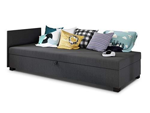 Sofa Misti II - Einzelbett, Schlafsofa mit Bettkasten, Bettsofa, Farbauswahl, Bettgestell, Komfortbett, Bett für Jugendzimmer, Schlafmöbel (Graphit (Lux 06))