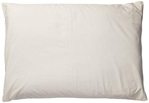 Natures Pillows Sobakawa Buckwheat Pillow With Free Pillow Protective Cover, 19' x 29'