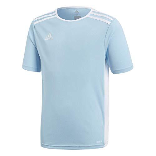 adidas Boys' Standard Entrada 18 Jersey, Clear Blue/White, Medium