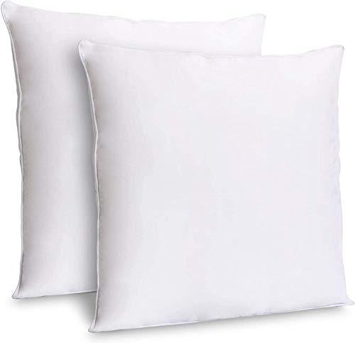 Zoyer - Almohadas Decorativas (2 Unidades, Color Blanco) - Almohadas cuadradas para sofá de Interior - Funda de polialgodón Premium, Blanco, 16x16 Inch