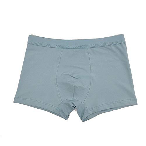 Ropa Interior para Hombre de algodón de Colores Hombre Transpirable Flexible Boxeador sólido Pantalones Cortos Masculino Calzoncillos, E Gray, 2XL