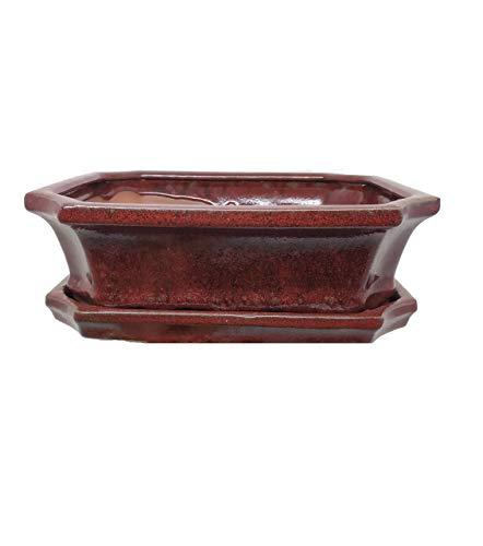 Japansai Tiesto Bonsai cerámica esmaltado a Mano artesanalmente