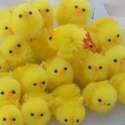12 Super Fluffy petits poussins de Pâques