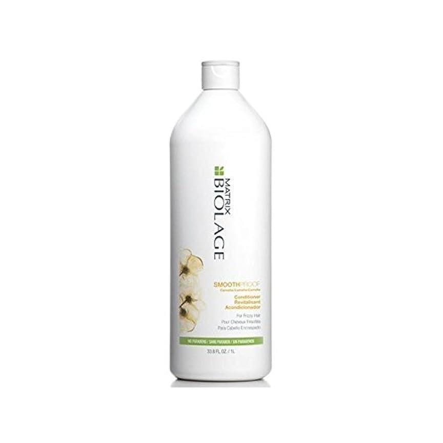 線安西くるみマトリックスバイオレイジコンディショナー(千ミリリットル) x2 - Matrix Biolage Smoothproof Conditioner (1000ml) (Pack of 2) [並行輸入品]