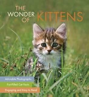 The Wonder of Kittens