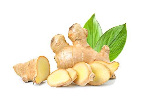 Ingwer | Bio Ingwer | Frischer Ingwer aus konventionellem oder aus biogisch zertifiziertem Anbau | Fresh Ginger (Biologisch, 100 g)