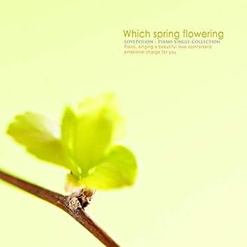 꽃이 피는 어느 봄날